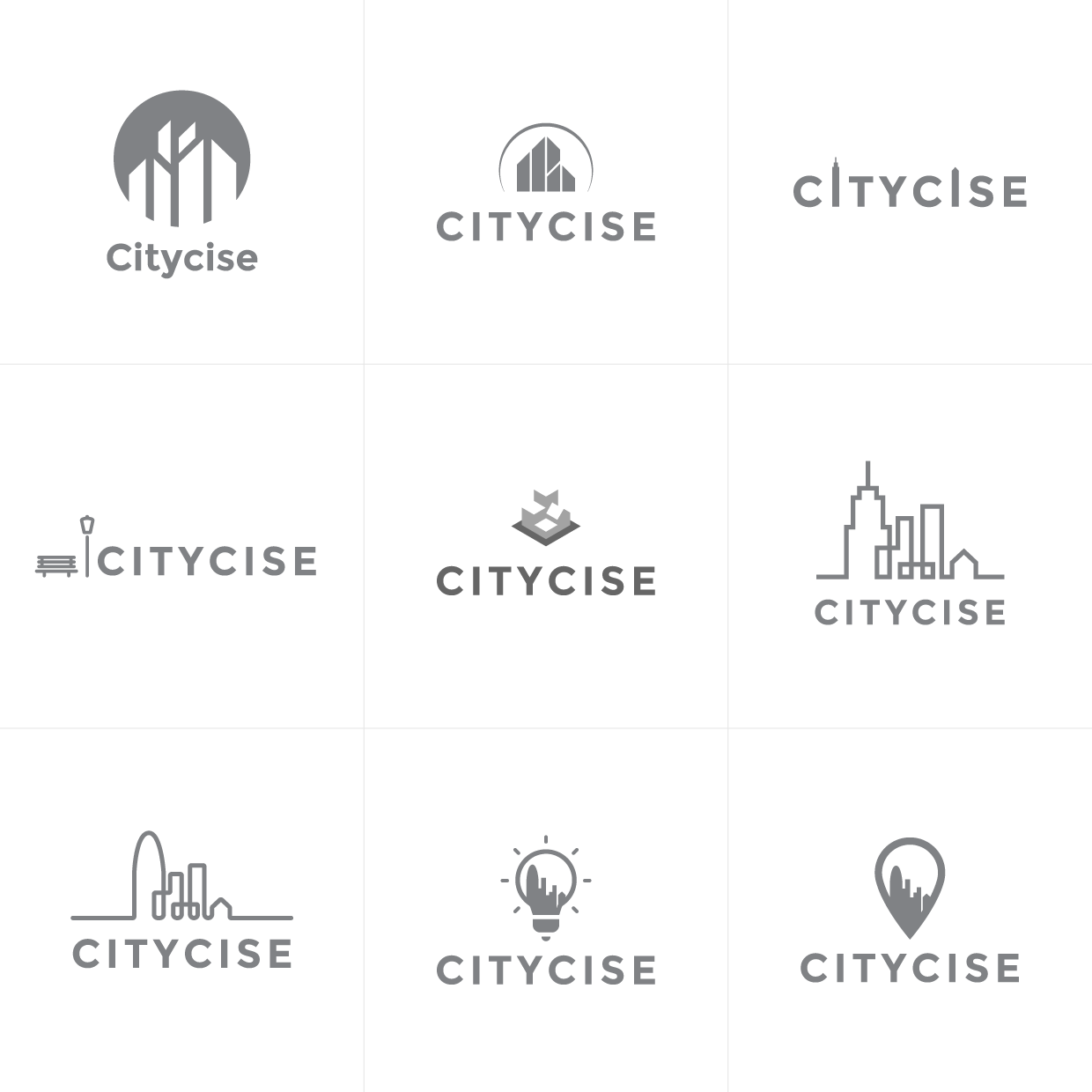 Citycise-logo-1-versions